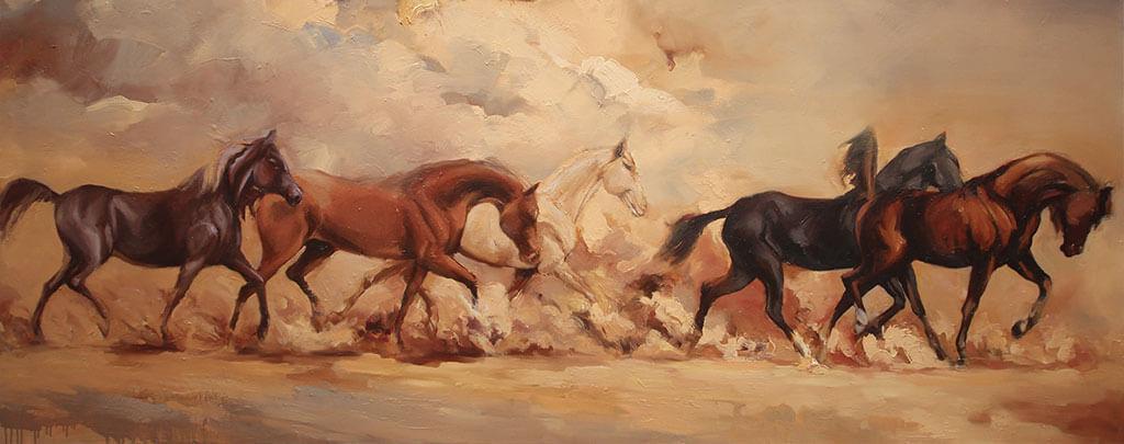 les cinq races de chevaux arabes